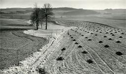 bystricko-na-vysocine-predjari-1956-copyright-vera-spurna.jpg