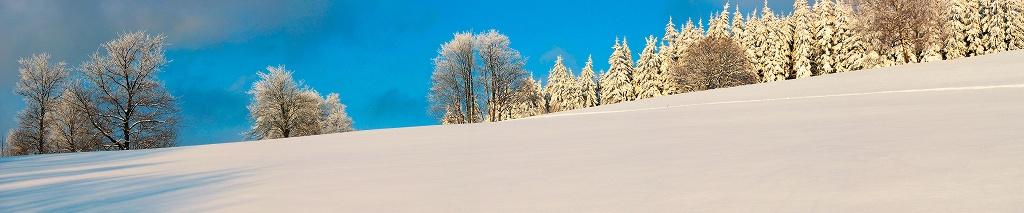 Výsledek obrázku pro zima šiřokoúhlá