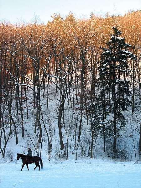 Nepodceňujte přípravu na zimní fotografování – DIGIarena.cz da40ef6878